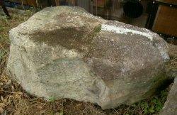 画像1: 丹波石 オカノ