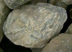 画像1: 江州産 安曇川石